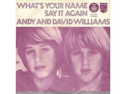 Andy And David Williams - What`s Your Name / Say It Again