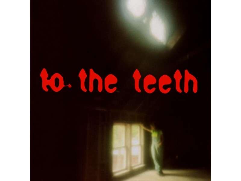 Ani DiFranco - To The Teeth