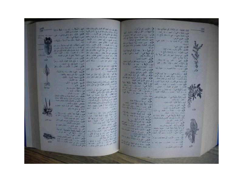 Arapski recnik