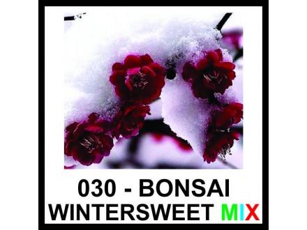 BONSAI HIMONANTUS (ZIMSKI CVET) - vrhunsko seme - MIX