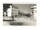 Backa Topola,cb razglednica,oko 1960,cista.