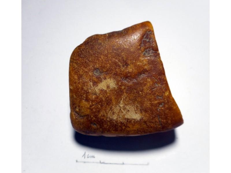 Balticki cilibar *antik* (Kalinjingrad) 31 gr