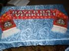 Bayer 04 Leverkusen navijacki sal