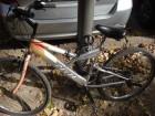 Biciklo DELTA