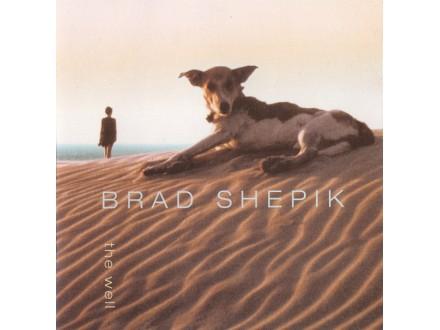 Brad Shepik - The Well