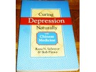 CURING DEPRESSION NATURALLY - Bob Flaws & Rosa Schnyer