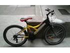 Capriolo bicikl -gume 26