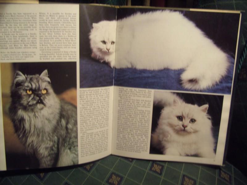 Cats, all about, Sve o mačkama , enciklopedija