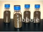 Crveni Šiso, (Perilla F.) 25g (oko 25 000 semenki)