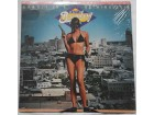 DAVID BROMBERG BAND - Bandit in a bathing suit