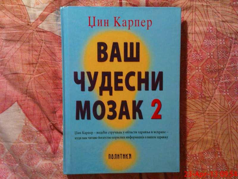 DZIN KARPER  --   VAS CUDESNI MOZAK 2