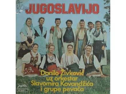 Danilo Živković - Jugoslavijo / Radimo Složno