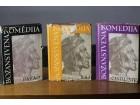 Dante Bozanstvena Komedija Pakao Cistiliste Raj