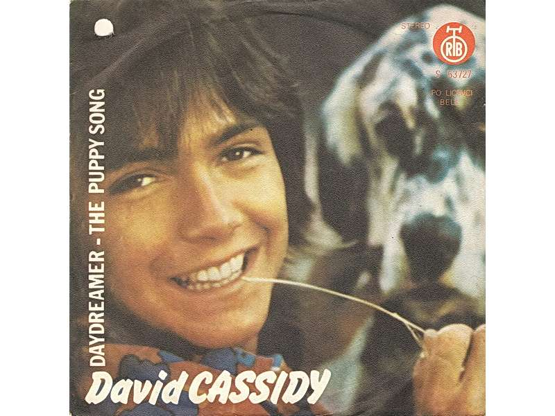 David Cassidy - Daydreamer / The Puppy Song