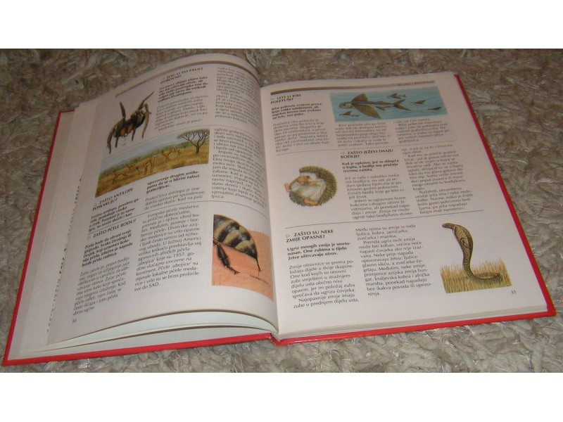 Djecja enciklopedija znanja zasto?