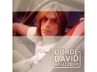 Đorđe David & Fuzzbox