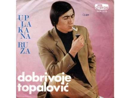 Dobrivoje Topalović - Uplakana Ruža