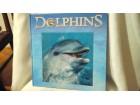 Dolphins Delfini knjiga o delfinima na engleskom