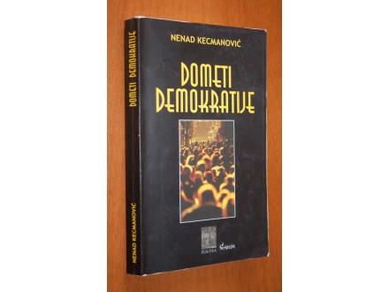 Dometi demokratije, Nenad Kecmanović