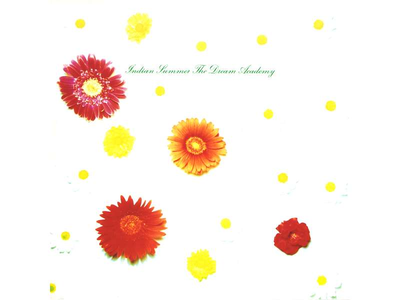 Dream Academy, The - Indian Summer