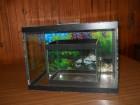 Dva akvarijuma po ceni jednog