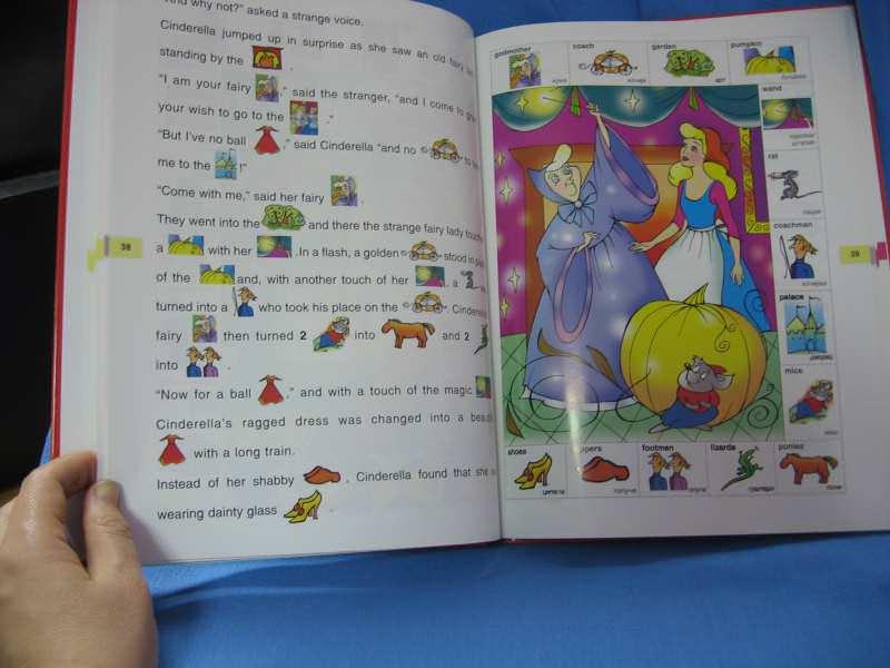 ENGLISH READING