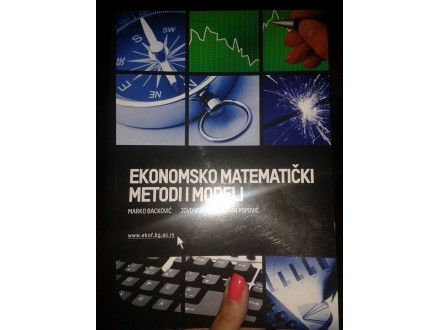 Ekonomsko matematicki metodi i modeli (knjiga)