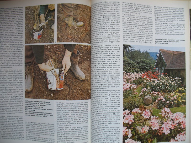 Enciklopedija bastenskog bilja
