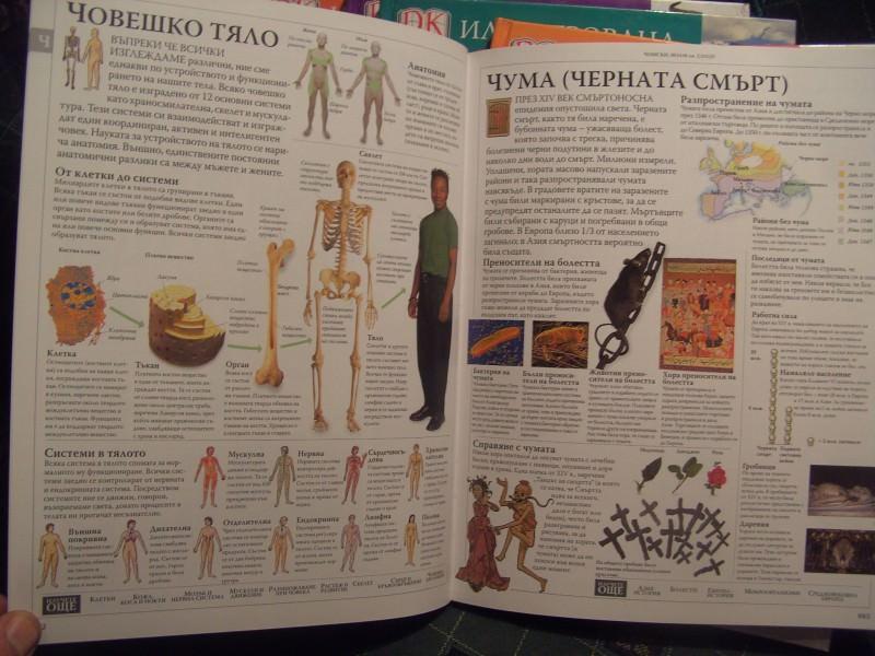 Enciklopedija na bugarskom, 11knjiga