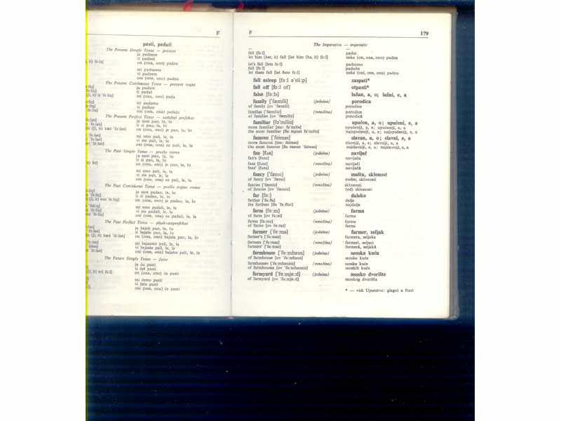 Englesko-srpsko-engleski gramaticki recnik