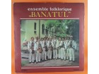 "Ensemble Folklorique ""Banatul""* ‎– Ensemble Folklorique"