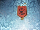FK Putevi 1972 Zajecar - zastavica