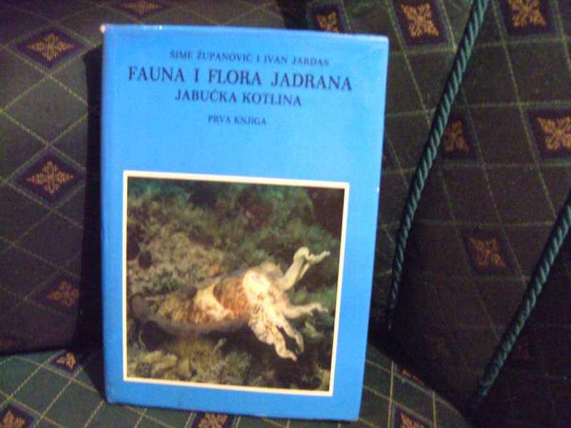 Fauna i flora Jadrana , I deo, Šime Županović