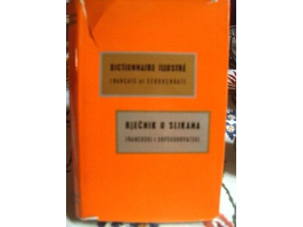 Francusko srpski, lustrovani rečnik u slikama