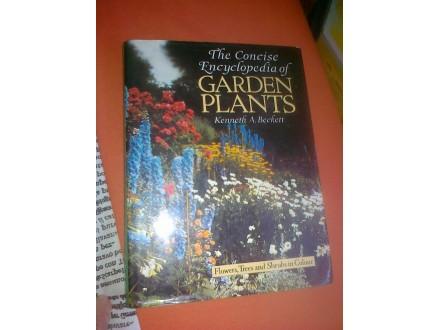 GARDEN PLANTS enciklopedija-Keneth A.Beckett