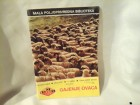 Gajenje ovaca