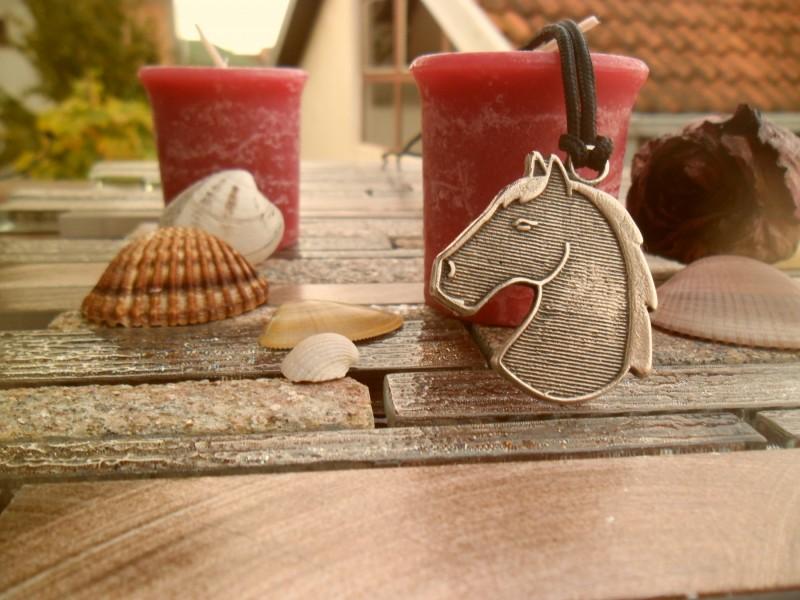 Glava konja ogrlica,ogrlica za ljubitelje konja