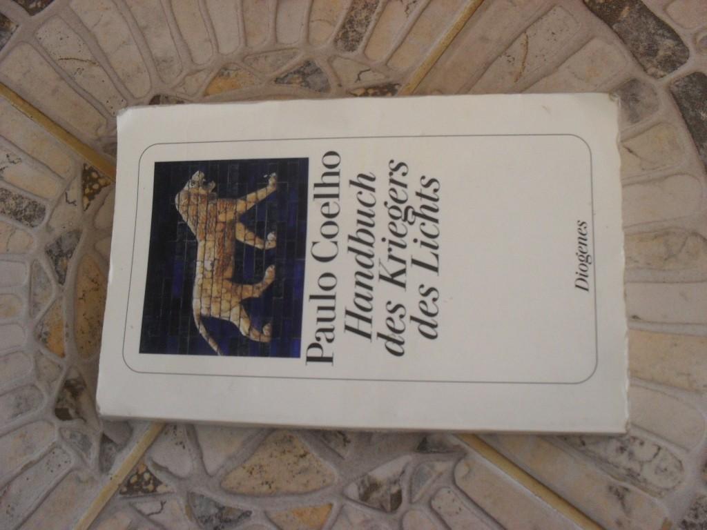 handbuch krieger des lichts