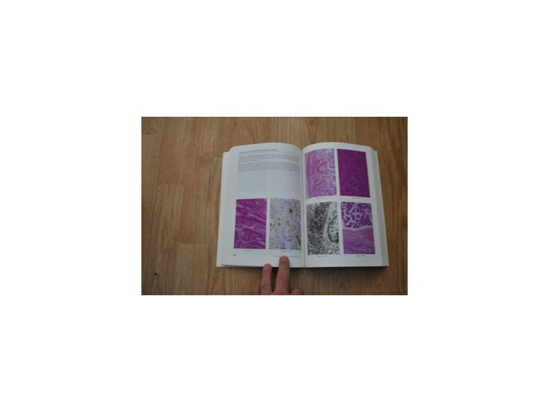 HISTOPATHOLOGY  a color atlas and textobook I.Damjanov