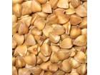 Heljda, 5g (oko 275 semenki)