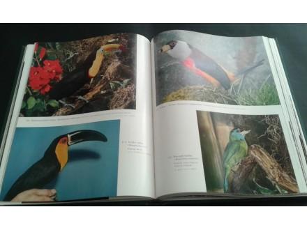 Ilustrovana enciklopedija životinja 5 knjiga