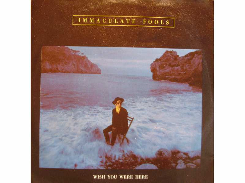 Immaculate Fools - Wish You Were Here