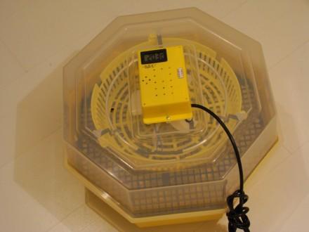Inkubator 50-60 jaja C5-TH digitalni + vlagomer