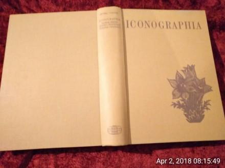 Javorka, Iconographia florae partis Austro-orientalis E
