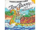 Jive Bunny and the Mastermixers - Thats What i Like