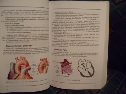 Kardiologija, Mirjana Lapčević, Dane Žigić