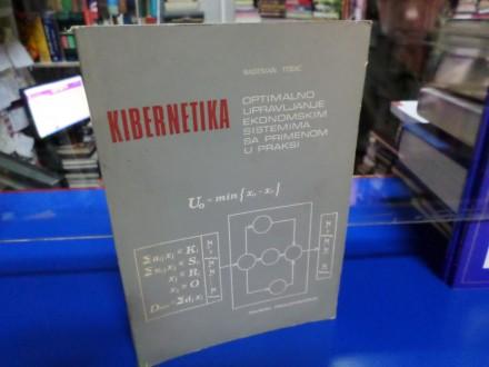 Kibernetika: Optimalno upravljanje ekonomskim sistemima