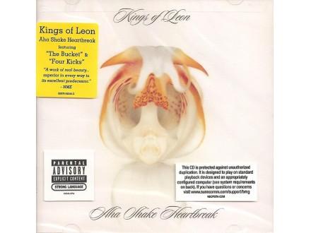 Kings Of Leon - Aha Shake Heartbreak