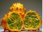 Kiwano (krastavac jež) 5 semenki