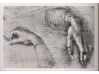 LEONARDO DA VINČI / Study of Hands
